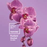 Radiant Orchid nail polishes, part 5 (The Brights)